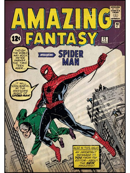 The Cover of Spiderman's First Comic