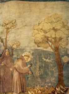 Giotto - St. Francis Preaching to the Birds