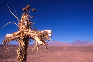 A cross made from lumber and dried flowers stands in the desert at San Pedro de Atacama. San Pedro de Atacama, Chile.