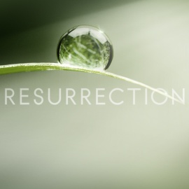 Resurrection TV show
