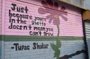 Grow in the Ghetto