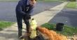 Flint Fire Hydrant