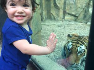 hannah-and-the-tiger