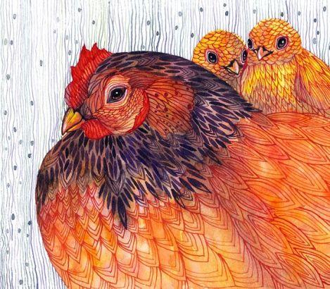 gallina+con+pollitos